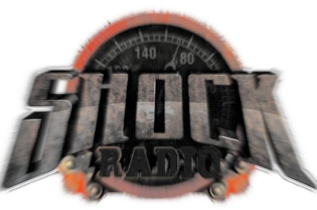 Radio Shock 2013