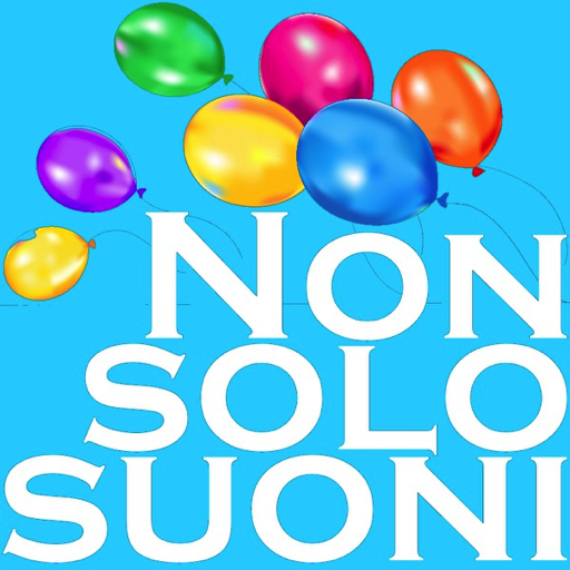 Nonsolosuoni Web Radio
